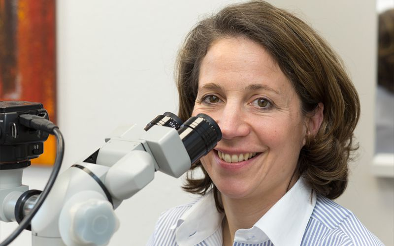 Zahnbehandlung mit mikroskop bielefeld für mehr qualität